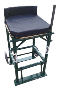 Field Events Chair